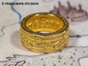 Ring - The Sun's Song (Size 6) 3d printed Gold Plated Glossy